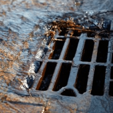 Rain Water Drain Installation Brighton