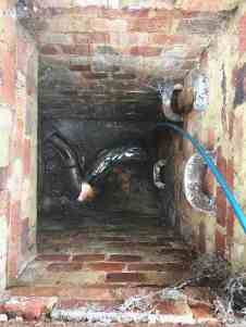 drain inspections Haywards Heath
